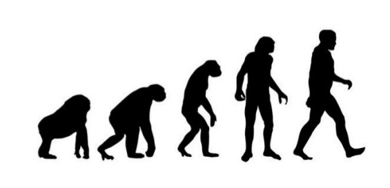 "Evolutionary ""Progress"""