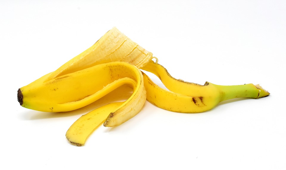 Yes! we have no bananas. Climate change discussion